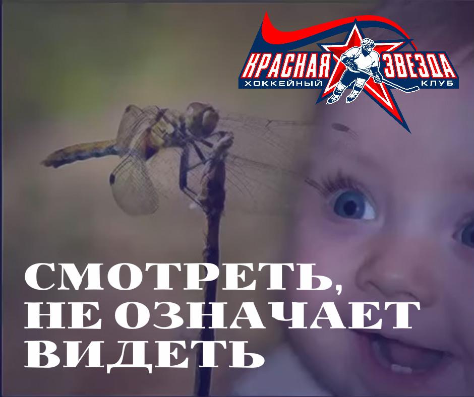 СМОТРЕТЬ, НЕ ОЗНАЧАЕТ ВИДЕТЬ